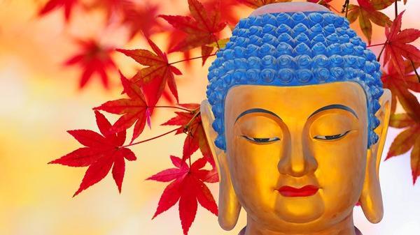 10 cách gieo trồng phước đức theo lời Phật dạy