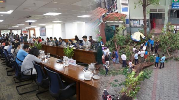 Họp báo vụ cây đổ: 18 học sinh thương vong, thầy Hiệu trưởng nhận trách nhiệm chính về vụ việc