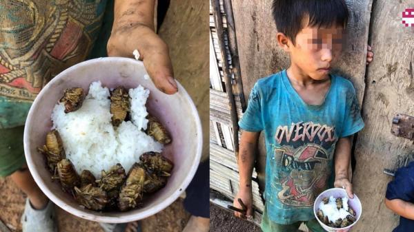 Bát cơm đầy ve sầu của những đứa trẻ nghèo: Nếu cảm tháy cuộc sống quá chán, hãy nhớ rằng mình vẫn sướng hơn rất nhiều người