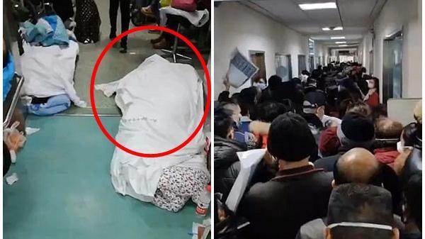 Rùng mình đoạn clip ghi lại cảnh tượng kinh hoàng trong bệnh viện Vũ Hán và lời cầu xin tuyệt vọng của nữ y tá