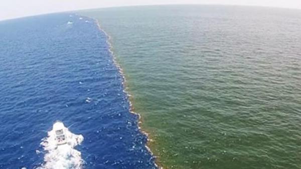 Nguyên nhân nước ở Thái Bình Dương và Đại Tây Dương không hòa vào nhau
