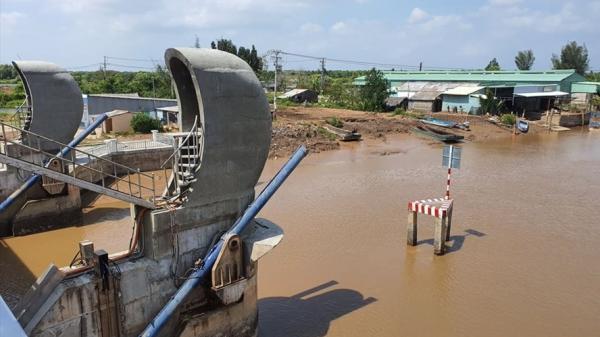 Thiếu nước, Bạc Liêu sẽ có hơn 10.000ha lúa, 9.000ha tôm thiệt hại