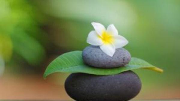 Đời người sống càng lương thiện thì chính là con đường đưa bạn đến bến bờ hạnh phúc