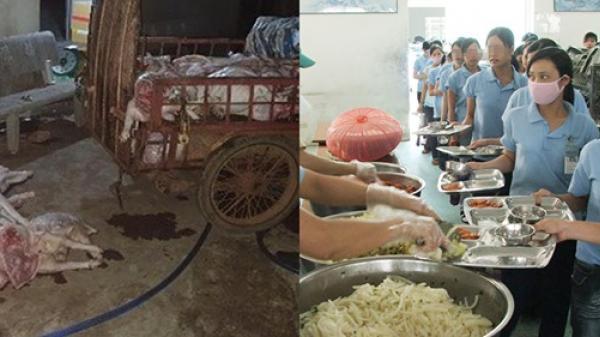 Bắt quả tang cơ sở mua heo không còn sống giá 50 nghìn đồng/con về xẻ thịt, bán cho công nhân KCN ở Đồng Nai